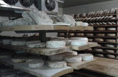 Azienda Agricola Bosio Loredana – Casnigo