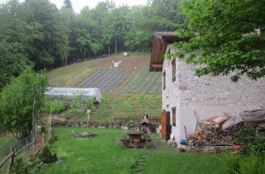 Azienda Agricola Della Fara - San Giovanni Bianco