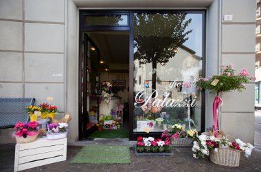 I fiori di Palazzi Piante e Fiori a Leffe