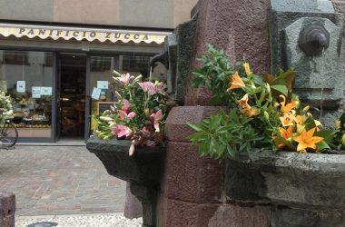 Panificio Zucca - Casnigo